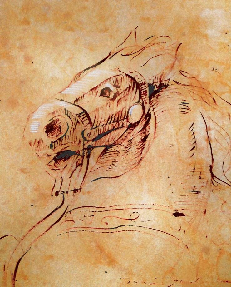 CM Horse Sketch